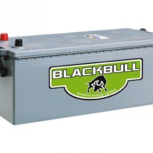 Batería AGM Blackbull 12V 250Ah