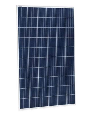 Placa Solar 270Wp Jinko Eagle JKM270PP-60